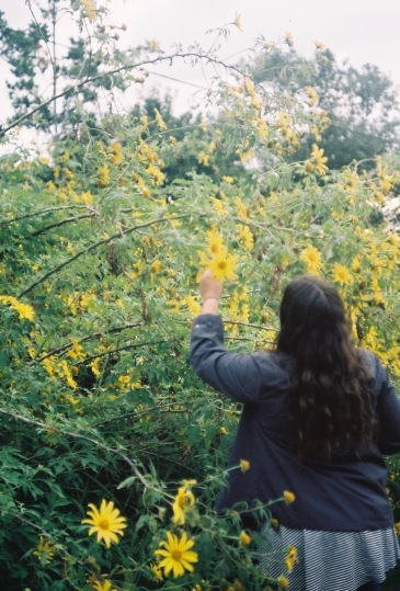 35mm Film - Montville - 10/06/2017