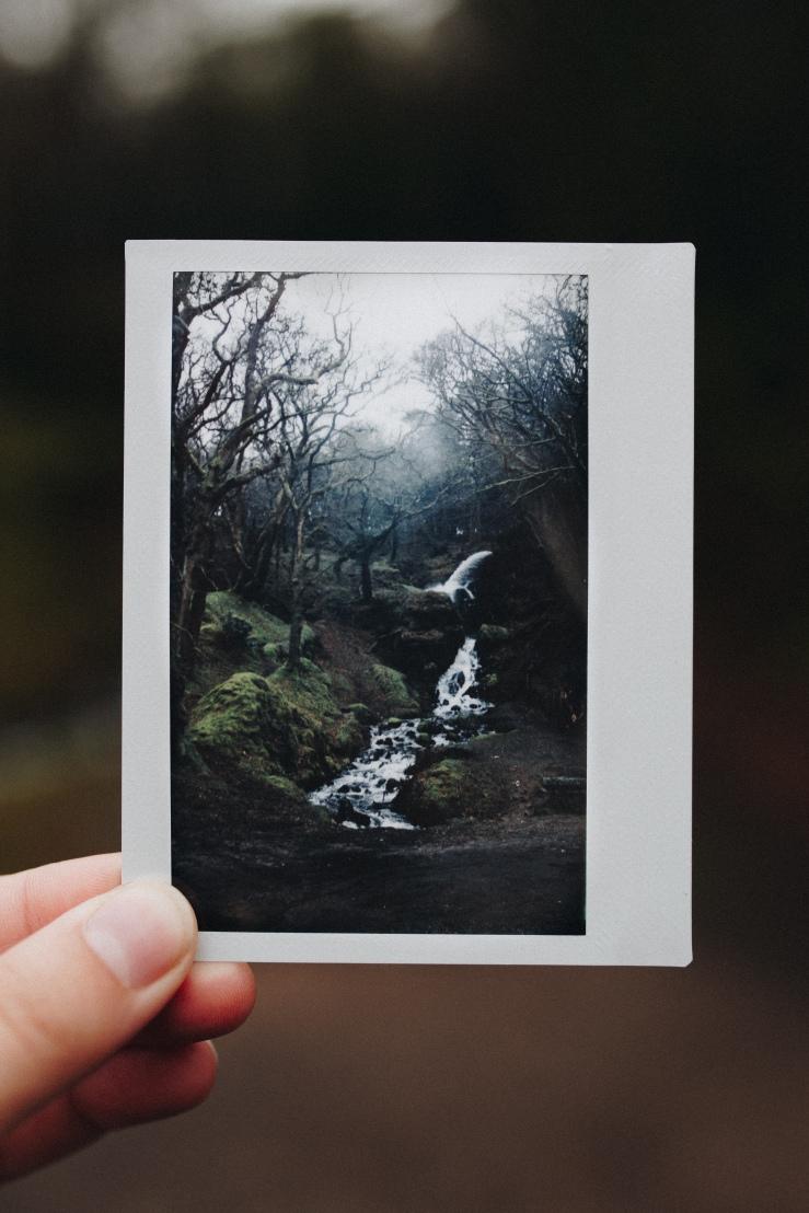 dartmoor_10