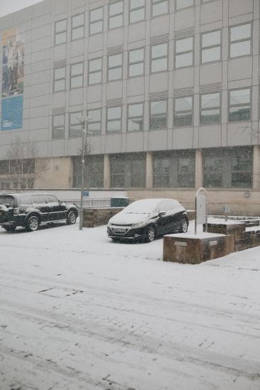 snow_11