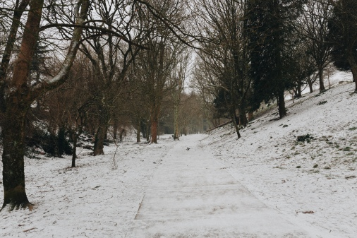 snow_26