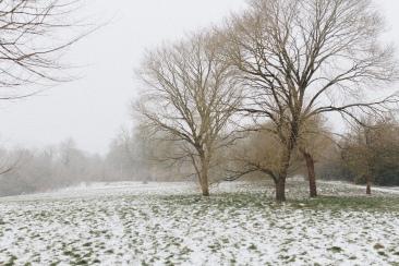snow_7